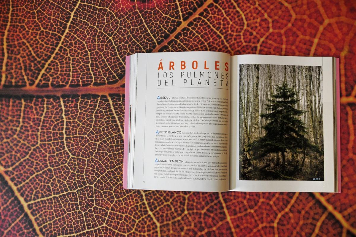 revista por qué preservar la naturaleza