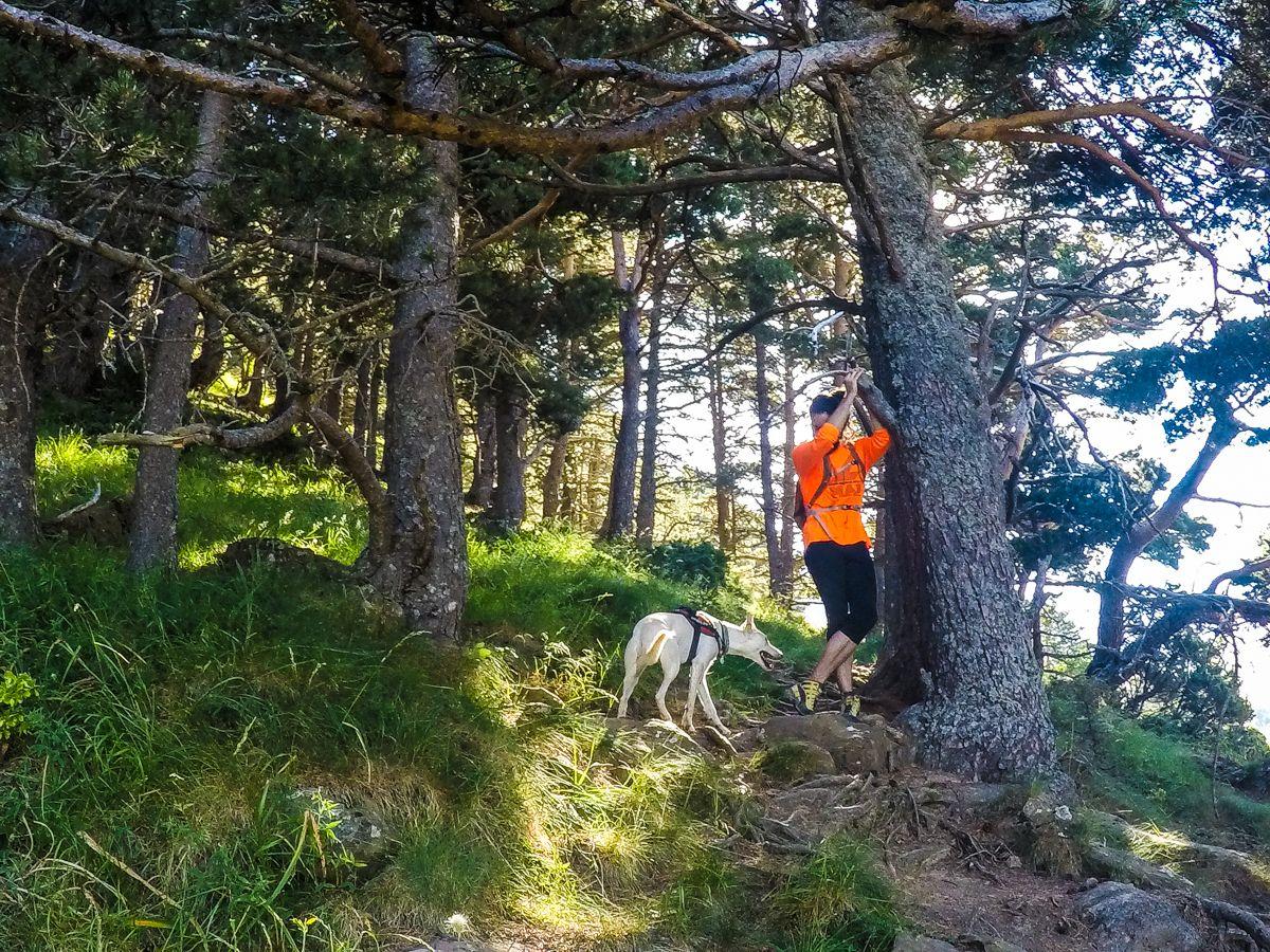 circular ibon de ip Pirineo ruta