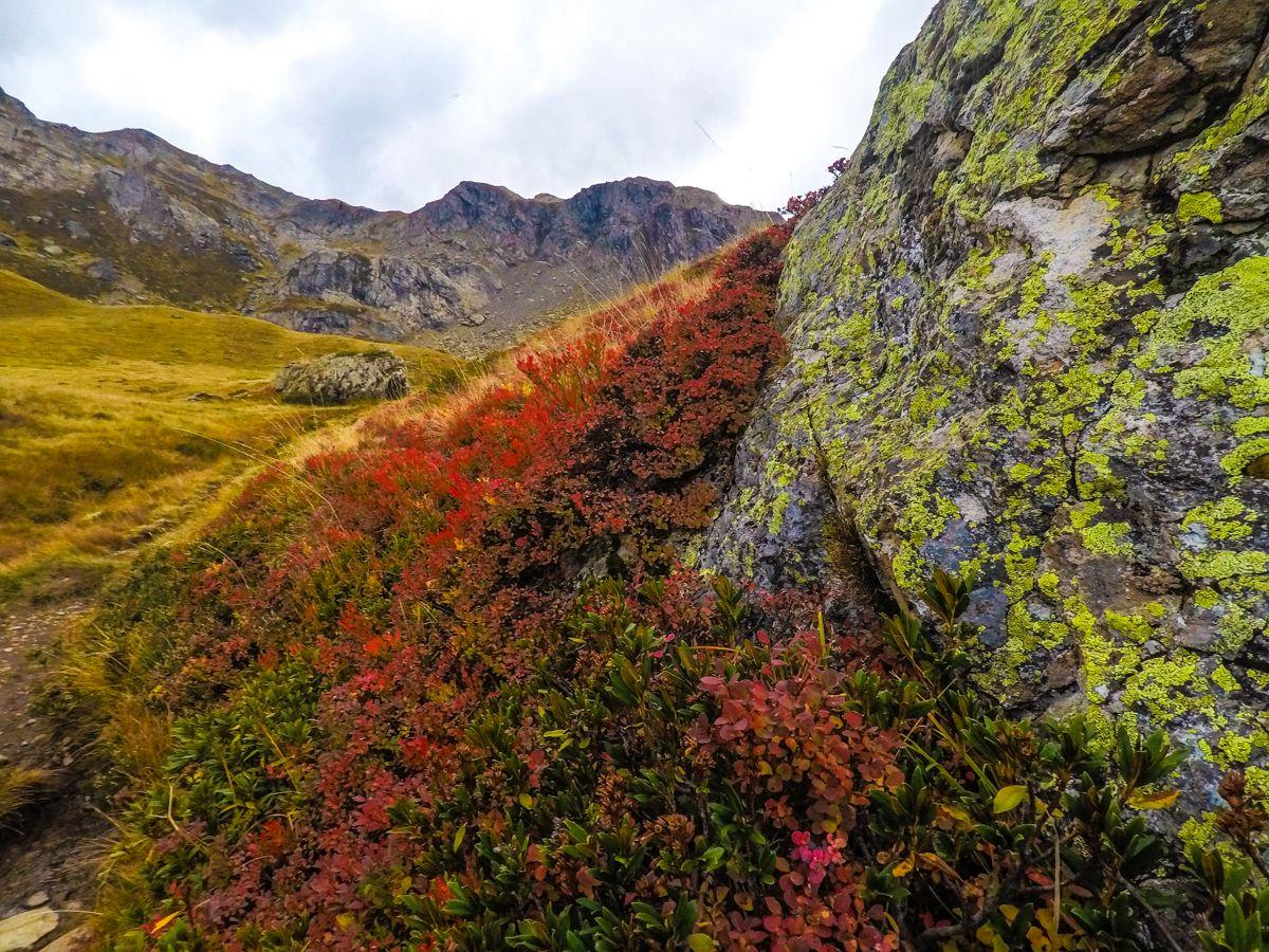 ruta ibon de espelunciecha cima norte pirineo valle de tena formigal otoño