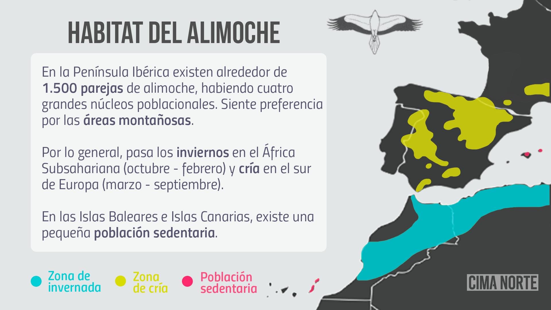 habitat alimoche mapa peninsula iberica pirineo cima norte