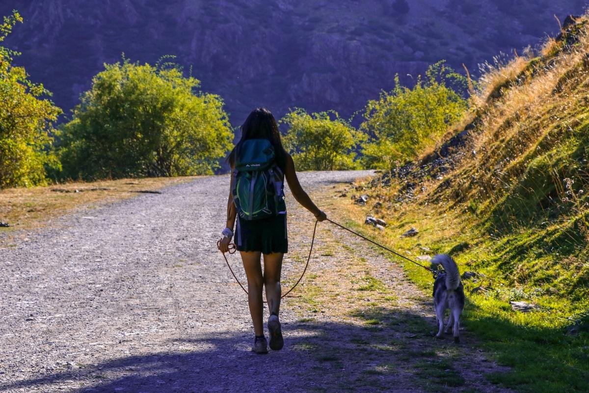 paseo mujer y perro pirineo