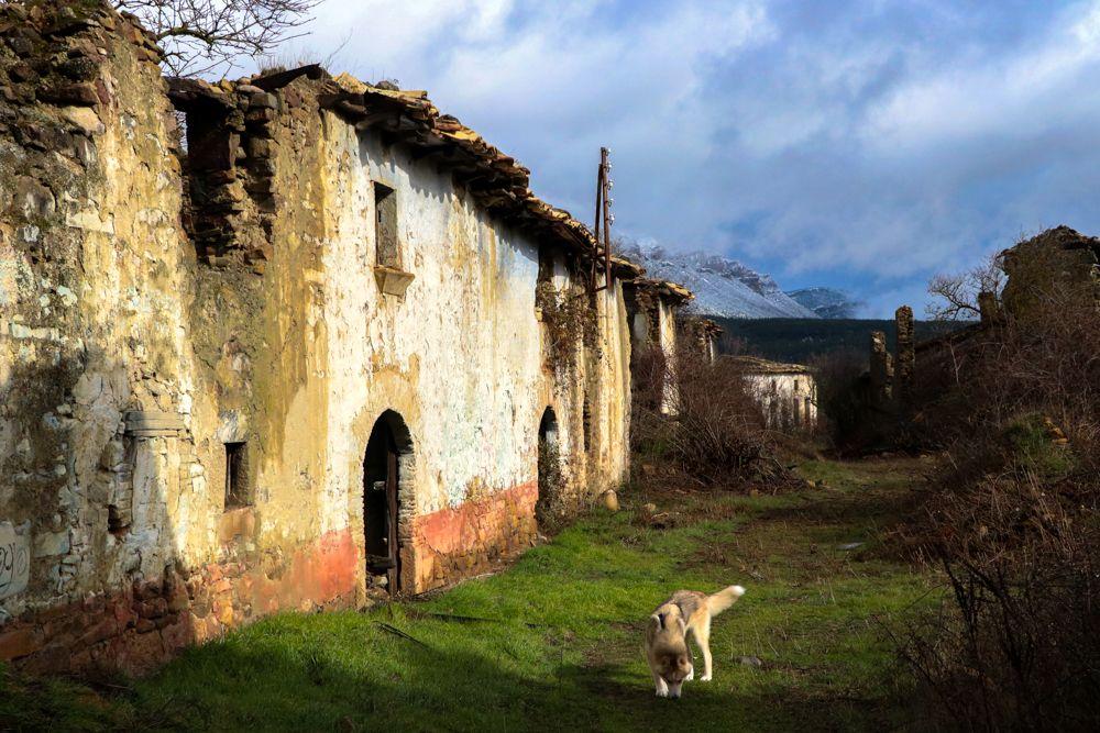 Tiermas, un camino fotográfico para el recuerdo