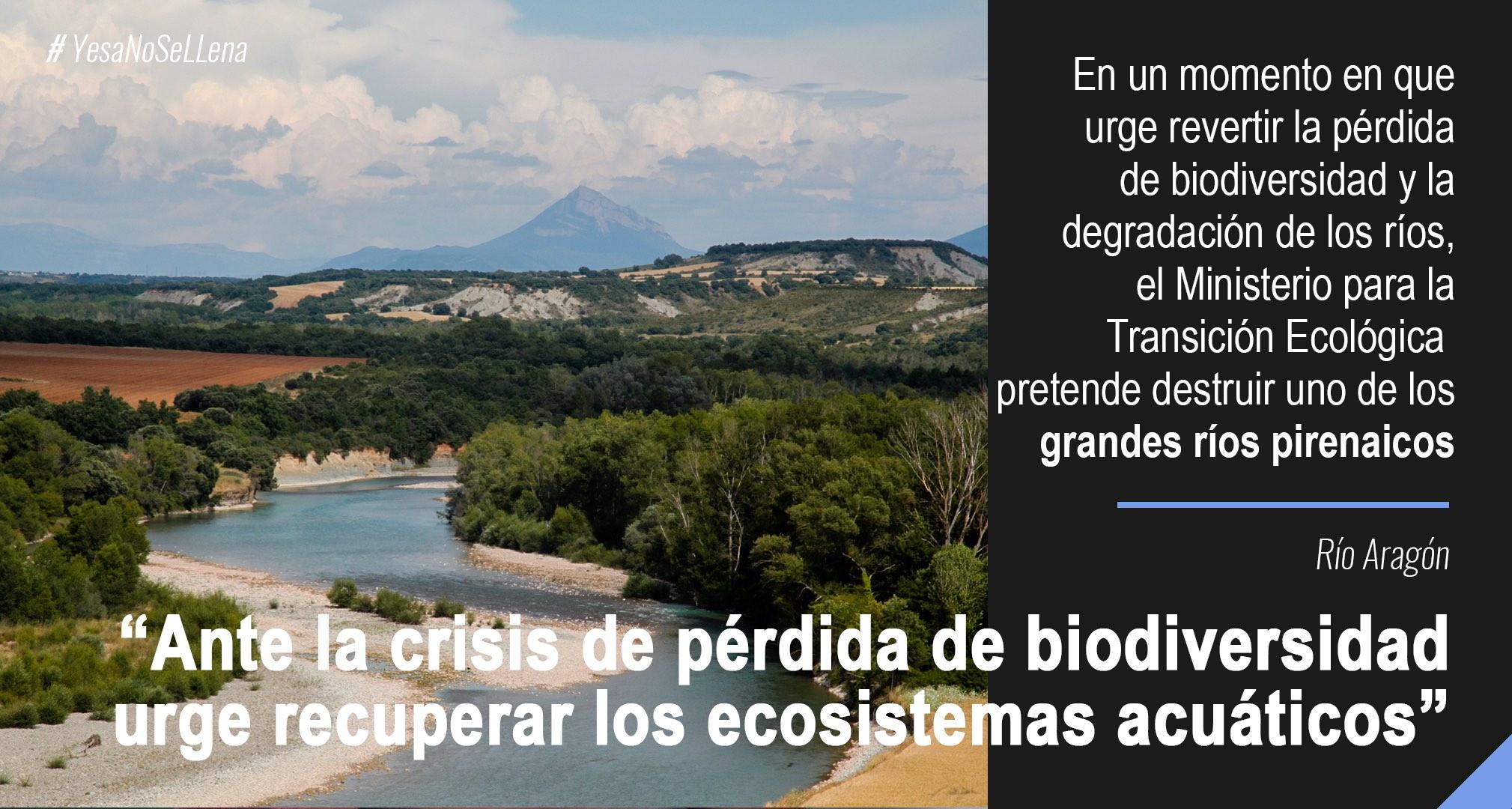 Infografías clima y agua Pérdida biodiversidad yesa recrecimiento