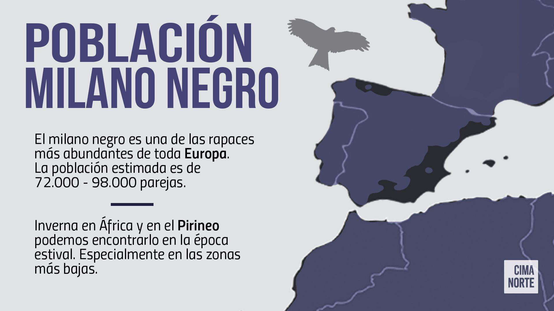 Mapa población milano negro europa