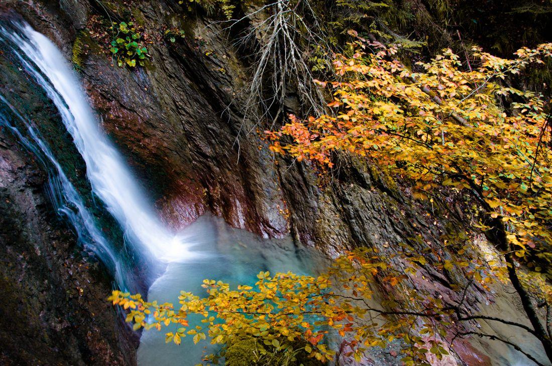 Paseo otoñal selva de oza otoño