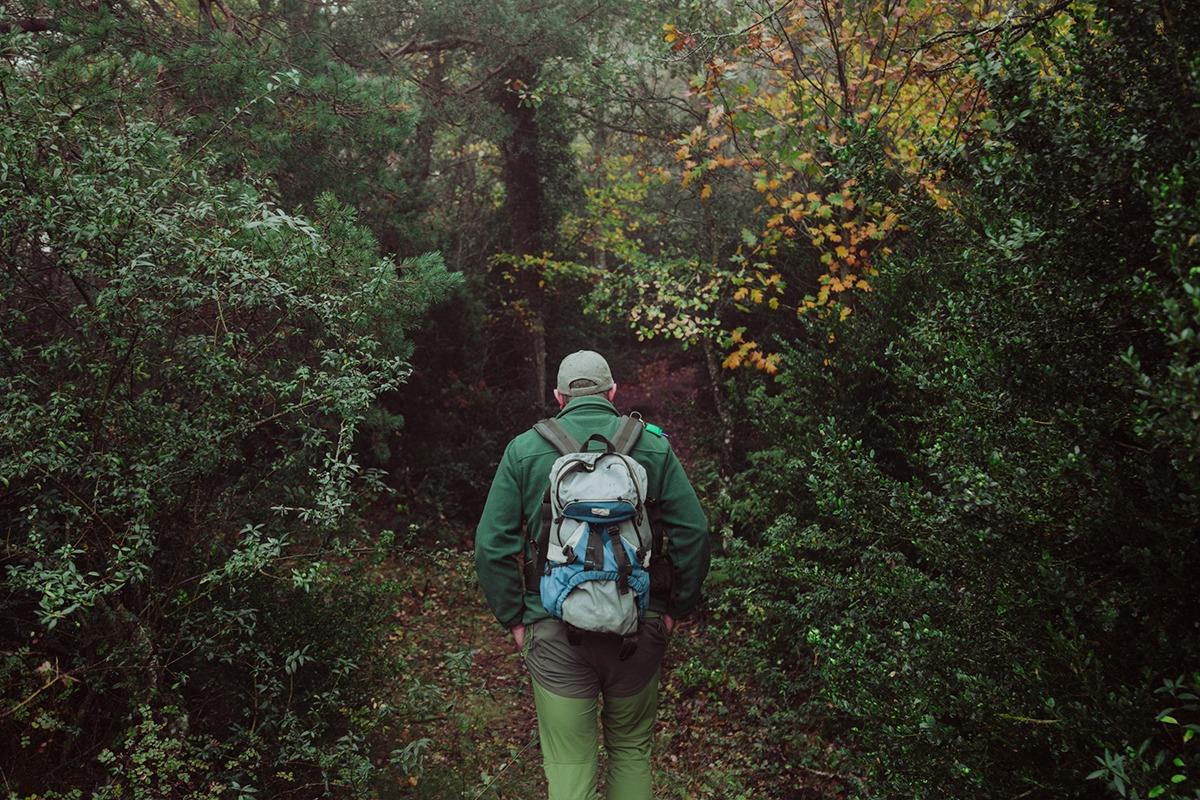 trekking bosque