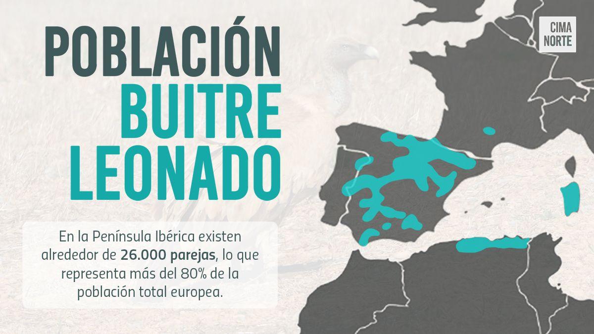 afiche población buitre leonado mapa