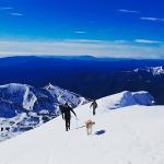 bisaurin invernal cima norte