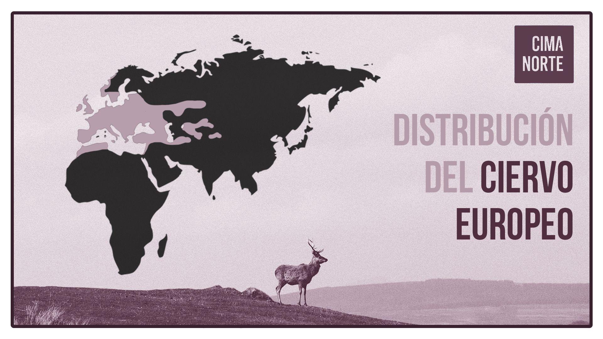 distribucion del ciervo europeo mapa infografía