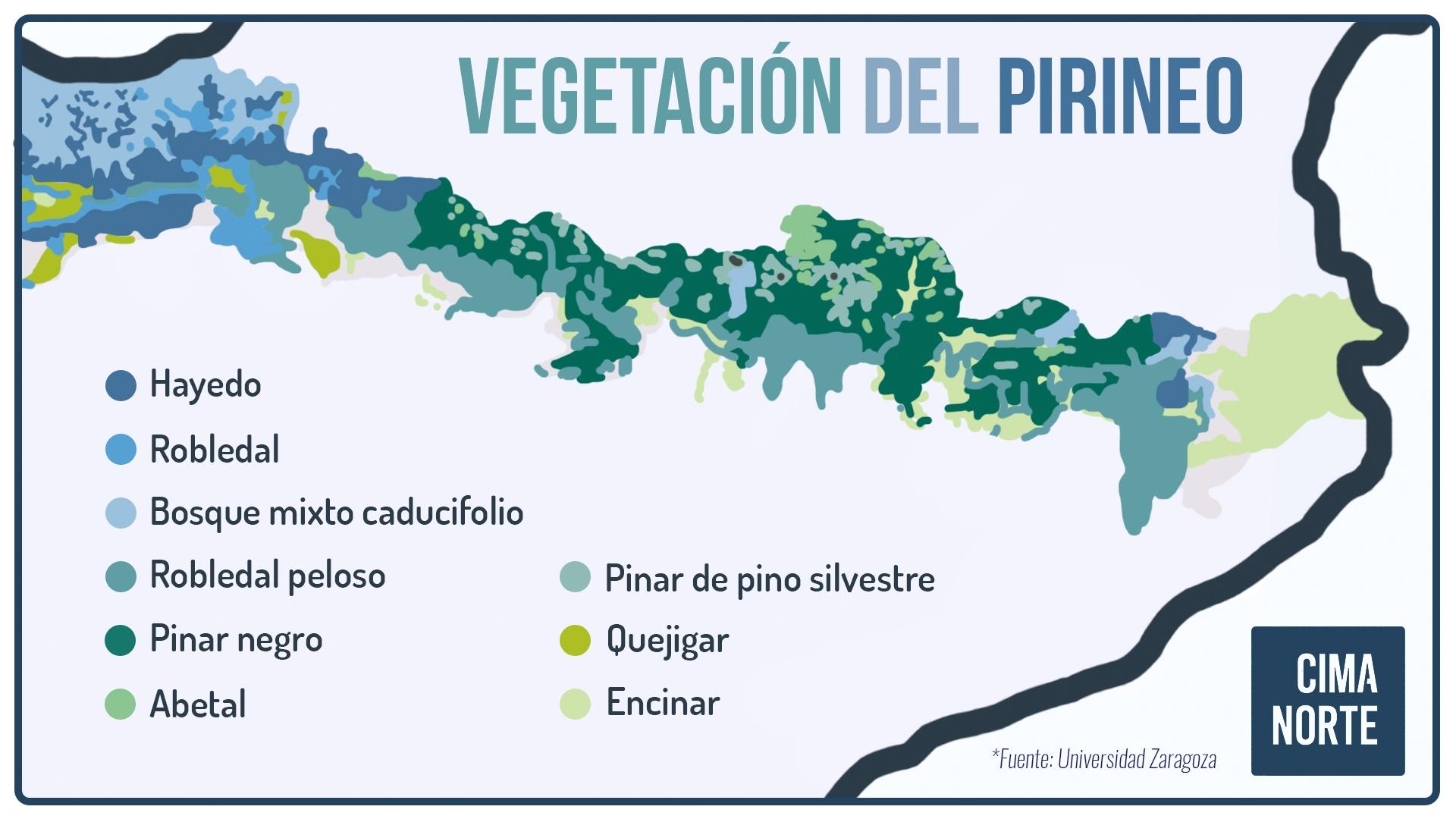 formaciones vegetales potenciales pirineo mapa vegetacion pirineo cima norte infografia