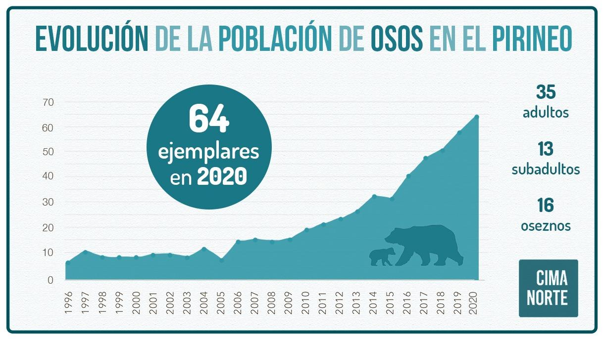 grafica evolucion poblacion osos pirineo