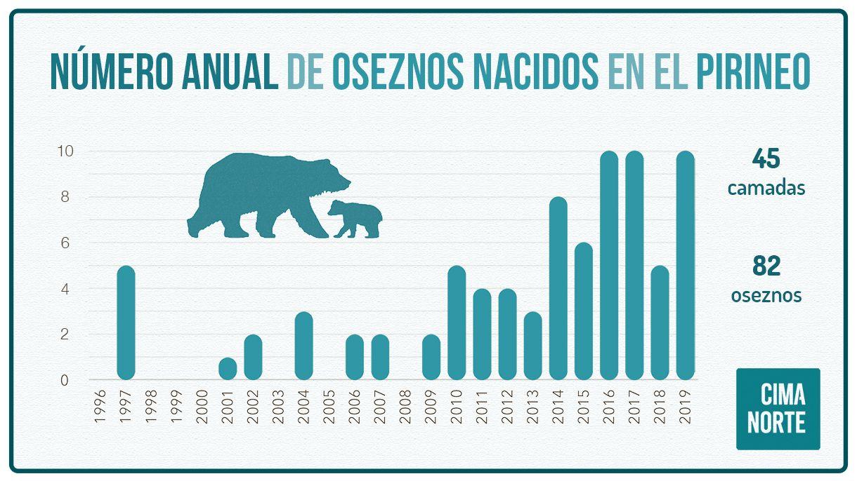 grafica numero anual de osos oseznos nacidos en el pirineo osos