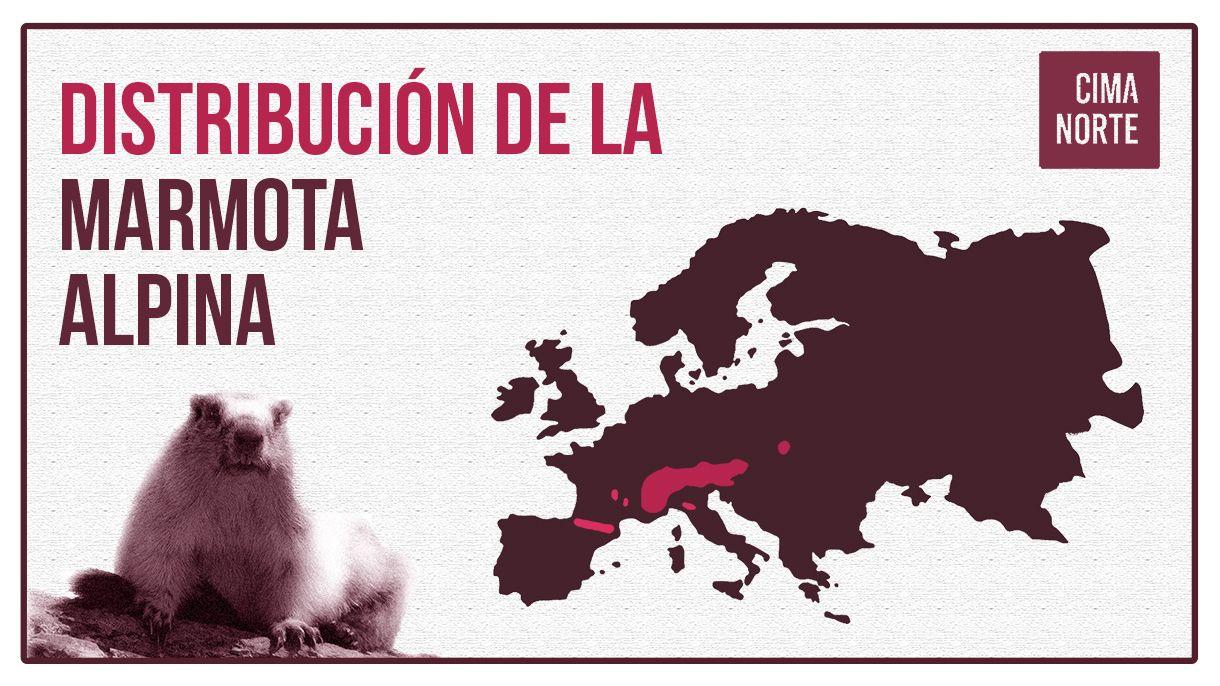 mapa distribucion marmota alpina en europa