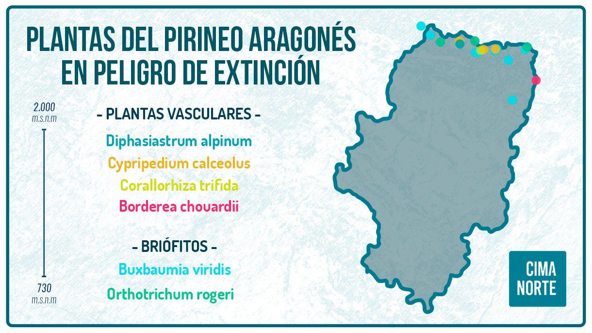 mapa plantas en peligro de extincion del pirineo aragones mapa