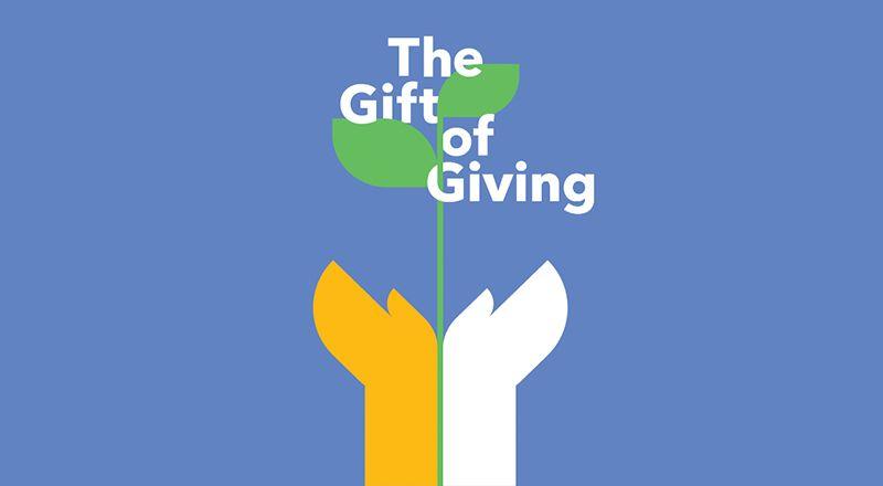 patagonia donaciones