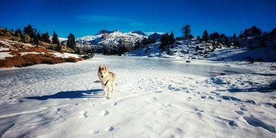 11 rutas para descubrir el valle de tena