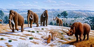 6 animales que vivieron en el norte de la península ibérico
