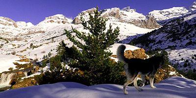 paseo invernal