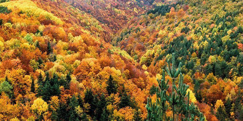 rincones mejores disfrutar otoño pirineo