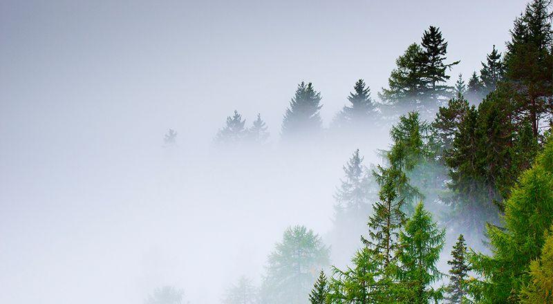 tipos de clima pirineo